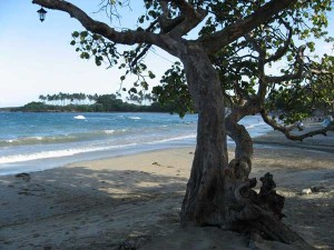 Seaside Tranquility in Cofresi