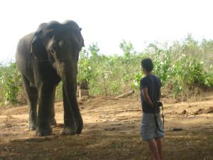 srilankaeyedd500