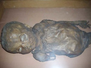 mummy-IPQ-800