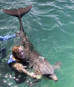 DolphinExplorer