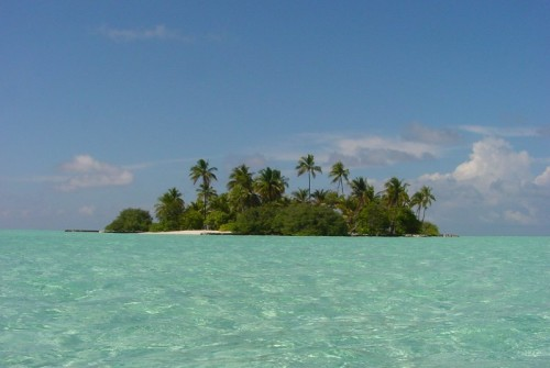 Maldives fun facts, midnight fishing,giant clams,geckoes,traditional music,island weddings