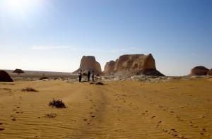 Egyptian safari, Adventure in Egypt, Egypt, Expat in Egypt, Egyptian Revolution