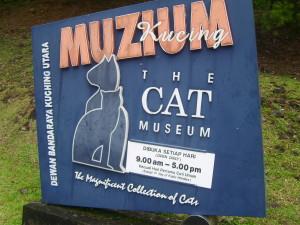 Cat Museum 2