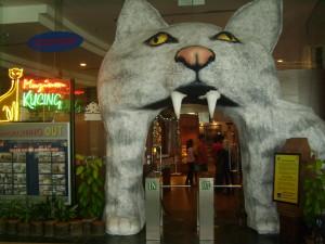 Cat Museum 3